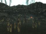 Ruzka's lair