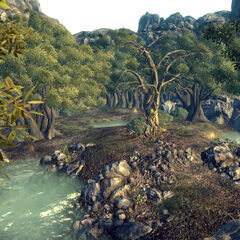 Загальний вигляд від входу Гаї