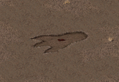 Fo1 Giant Footprint