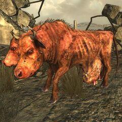 Брамін в <i>Fallout 3</i>