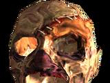 Máscara de necrófago