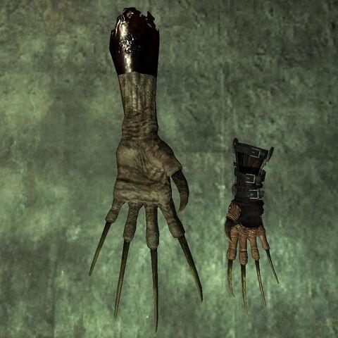 Порівняння лапи і рукавички кігтя смерті