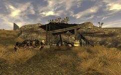 Snyder Prospector Camp