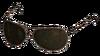 AuthorityGlasses