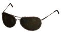 AuthorityGlasses.png