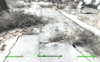 Fallout-4-stealth-boy-activado