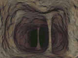 Ядовитые пещеры