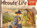 Scouts' Life
