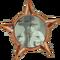 Badge-2681-2