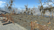 FO4 The Slog 3