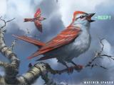Sparrow (creature)