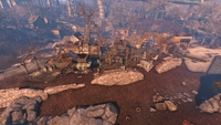 Fo4 Forest Grove marsh TV 4