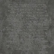 Boulder City Memorial Texture 2
