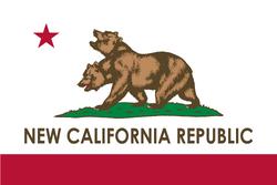 FNV NCR Flag