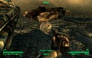 Dead eyebot