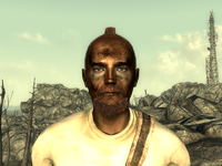 FO3Wasteland doctor9