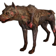 Здичавілий собака (<i>Fallout 3 і Fallout: New Vegas</i>)