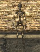 FNVDM Starlet skeleton female