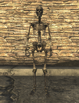 Скелет актрисы