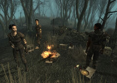 Fo3PL smugglers