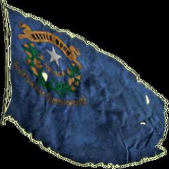 «Народжений в битвах — Невада — Південно-західне Співтовариство», прапор зовні будинку Мітчелла.