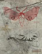 F76 Van Lowe Mothman Sketch 1