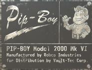 FO76 Pip-boy lable