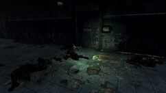 FNV Fiend corpses
