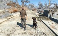 FO4 Gene and Junkyard dog