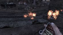 Nuka afterfire