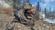 Venomous angler