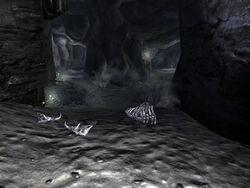 FO3 dog cave interior decor