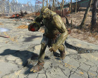 FO4 super mutant suicider