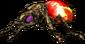 FoT boombug