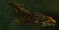 Swimminggecko1.png