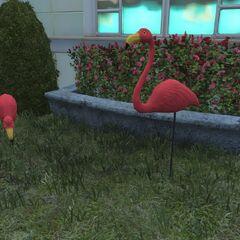 Pre-War flamingos