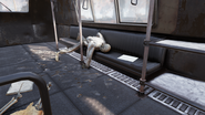 FO76 abandoned bog town (Notice of explusion 03)
