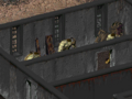 Fo1 Gary.png