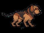 FoS Bloodhound