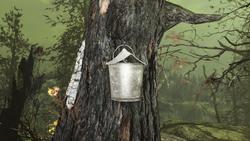 FO4FH Sap bucket