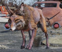 FO76 fox