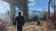 Fallout4 Overpass 1444818428