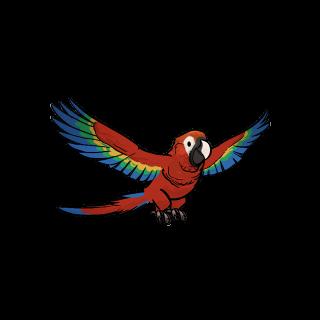 Піратський папуга