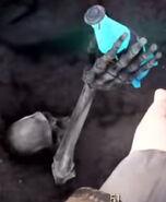 Nuka-Cola Quantum skeleton