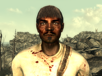 FO3Wasteland doctor5