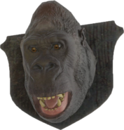 FO4-Mounted-Gorilla-Head