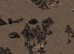Mercenaries' Cave Ladder