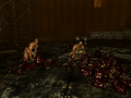 FO3TP Abandoned area — Trogs.png