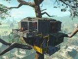 Casa del árbol de Chapita