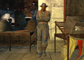FO4NW Shank pose.png